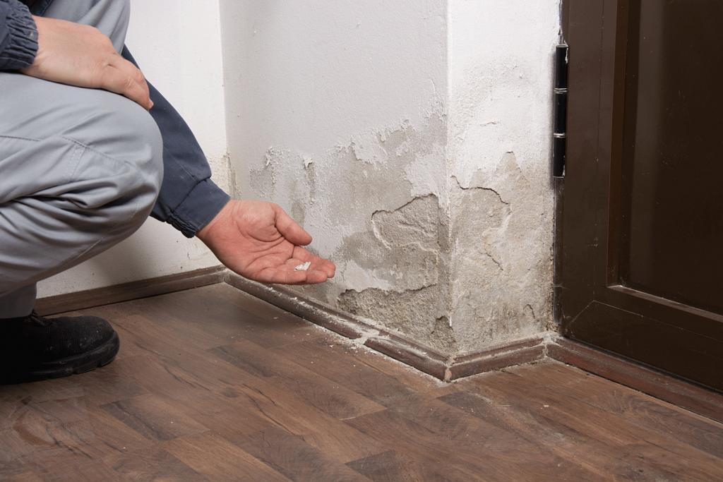 Home Restoration Contractor